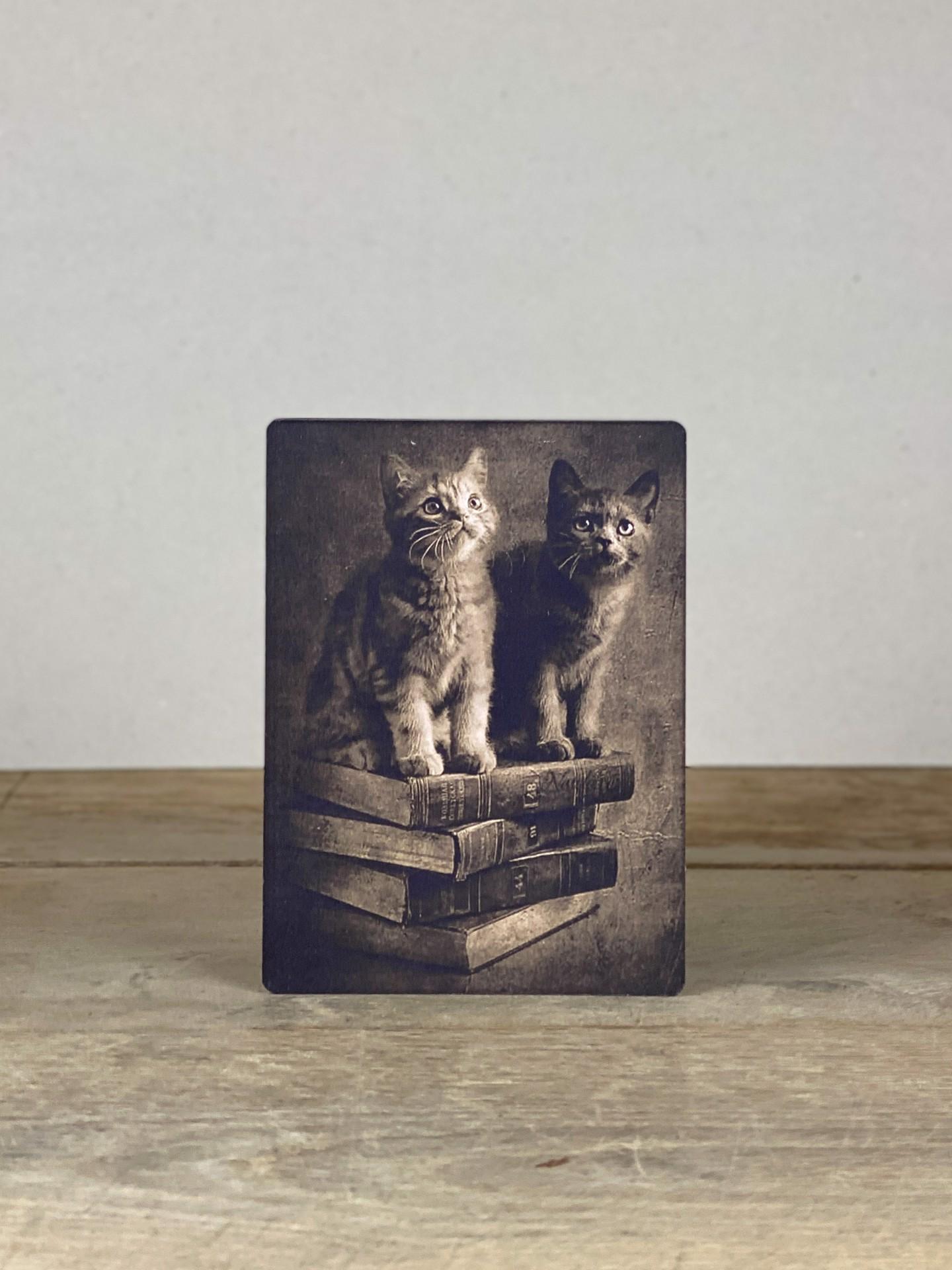 Vintage Holzbild Katzen