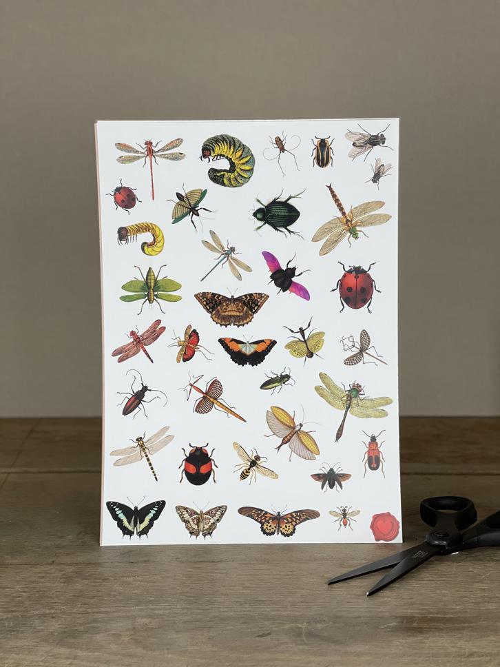 Stickerbogen Insekten